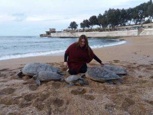 Nazli : le sauvetage des tortues