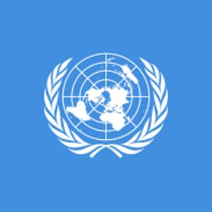 BREAKING NEWS : LITTLE CITIZENS à New York aux NATIONS UNIES.