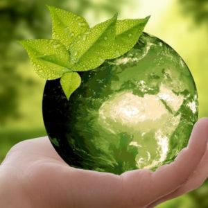 Les théories économiques face aux réalités des crises environnementales