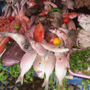 Le mercure, le poisson et les chercheurs d'or