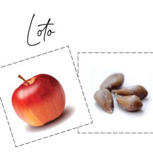 Loto des fruits et des graines