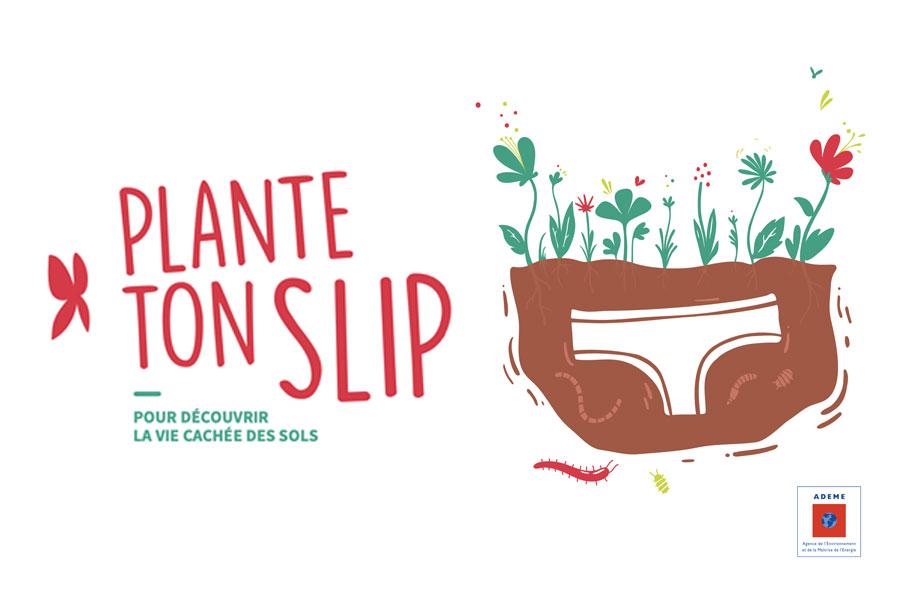 Plante ton slip !
