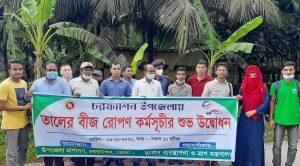 Plantation de graines de palmiers dans le district côtier de Bhola au Bangladesh