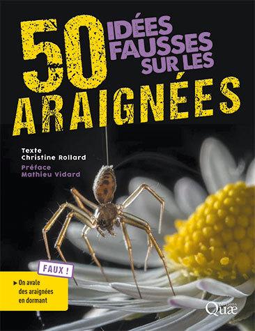 Cinquante idées fausses sur les araignées