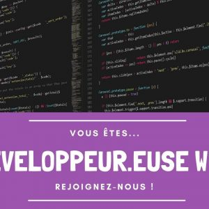 Concepteur.trice / développeur.euse Web